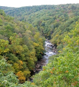 The Youghiogheny River Scenic Corridor is a candidate for Wildland designation in Garrett County