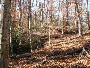 Permanently protected woodlands in McIntosh Run watershed
