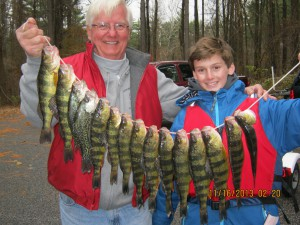 Survey participants proudly displaying their Yellow Perch bounty