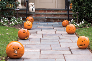 Photo of: Pumpkin-lined walkway to front door