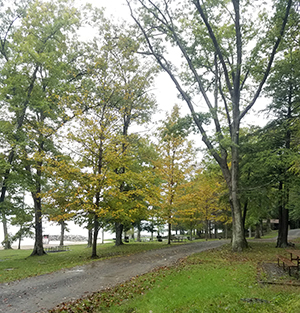 Fall Foliage at Deep Creek Lake State Park - Sept. 25, 2018