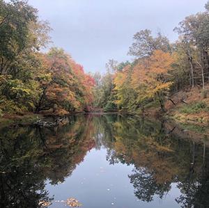 Seneca Creek State Park, photo by Shea Niemann