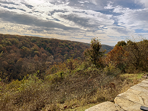 Hollofield Overlook in Patapsco Valley State Park, photo by Felicia Graves