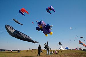 Cambridge KiteFest