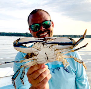 Jumbo male blue crab - Photo by Rich Watts