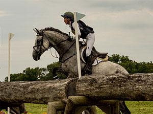 Horse jumping at Fair Hill