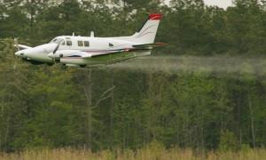 mosquito plane-jeff moreland1