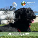 Earth Day 2021 & Bring Your Kids & Pets to Work Day
